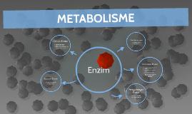 METABOLISME