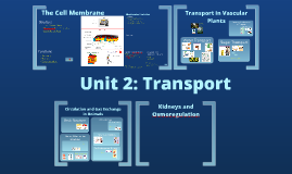 Unit 2: Transport