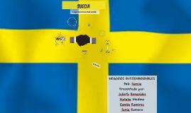 Exposición Negocios Internacionales País Suecia