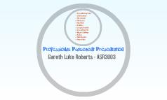Professional Placement Presentation