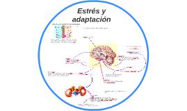 Estes y adaptación