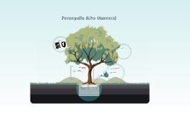 Persepolis (Che Guevara)