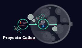 Proyecto Calico
