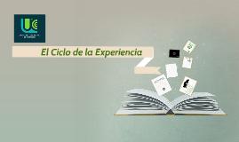 Copy of El ciclo de la experiencia