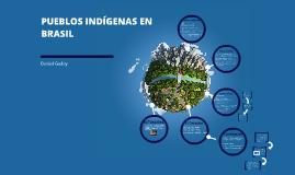 PUEBLOS INDÍGENAS EN BRASIL