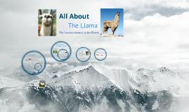 Llamas: The Saga