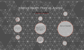 Internal Health: Plant vs. Animal