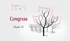 Government - Unit 3, Chapter 10: Congress