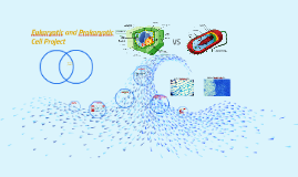 Eukaryotic and Prokaryotic Cell Project