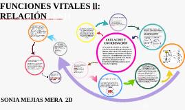 Copy of FUNCIONES VITALES11