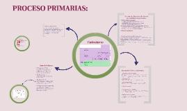 Proceso  primarias Podemos
