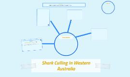 Shark Culling In Western Australia
