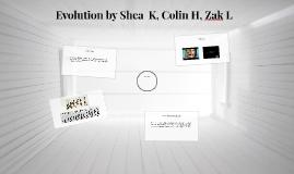 Evolution    by Shea  K.