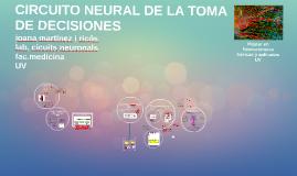 CIRCUITO NEURAL DE LA TOMA DE DECISIONES