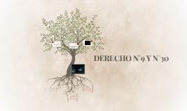 DERECHO N°9 Y N°10