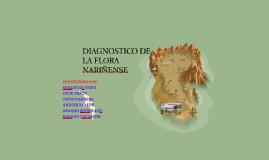 Copy of DIAGNOSTICO DE LA FLORA NARIÑENSE