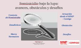 Feminicidio bajo la lupa: avances, obstáculos y desafíos