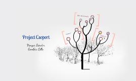 Project Csoport