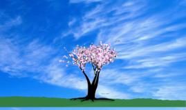 Tree of Skill