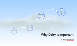 Why Dairy is important