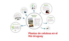 Plantas de celulosa en el Rìo Uruguay