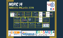 COPIL MOPIC 14