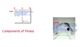 Bosco Components of Fitness