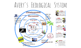 Avery's   Ecological   System