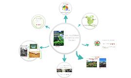 Les systèmes alimentaires locaux