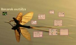 Copy of Rovarok osztálya