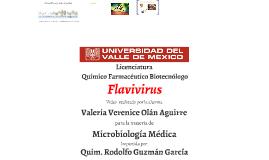 Valeria Verenice Olán Aguirre