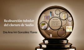 Copy of Reabsorción tubular del cloruro de Sodio