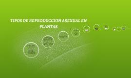 Significado de asexual en espanol