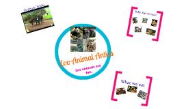 Zoo Animal Antics