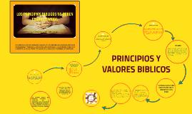principios y valores de vida