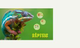 Copy of Répteis