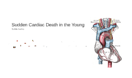 Copy of Sudden Cardiac Death in the Young