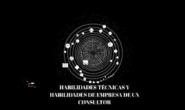 HABILIDADES TÉCNICAS Y HABILIDADES DE EMPRESA DE UN CONSULTO