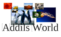 Addils World