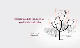 Importancia de la cultura en los negocios internacionales