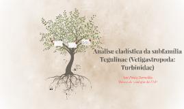 Análise cladística da subfamília (Vetigastropoda: Turbinidae