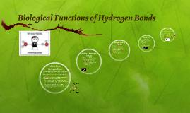 Biological Functions of Hydrogen Bonds
