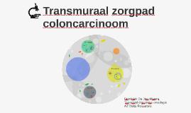 Transmuraal zorgpad coloncarcinoom