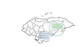 Levantamiento del Censo Nacional de Productores(As) de Cacao