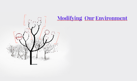Changing the Environment
