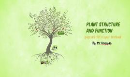 Plant Structure - 4th Grade