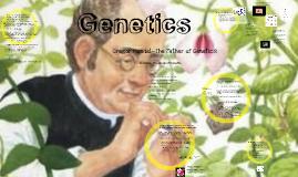 Genetic - Mendel's Work 2014 Prezi