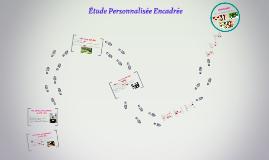 Copy of Etude Personnalisée Encadrée