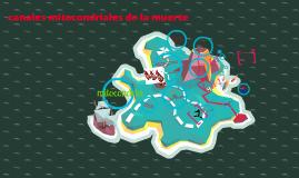 Copy of Copy of Canales mitocondriales de la muerte