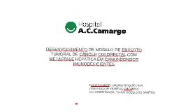 Copy of DESENVOLVIMENTO DE MODELO DE ENXERTO TUMORAL DE CÂNCER COLOR